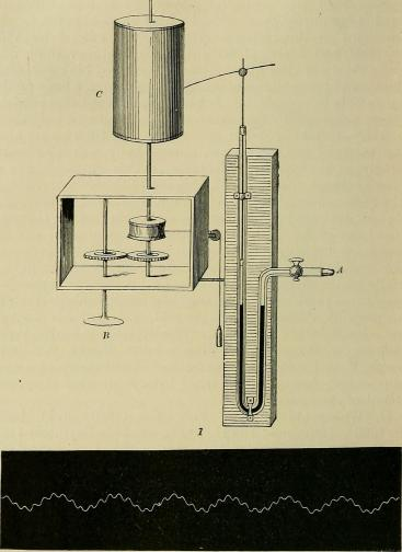 General_physiology;_an_outline_of_the_science_of_life_(1899)_(14779699911)